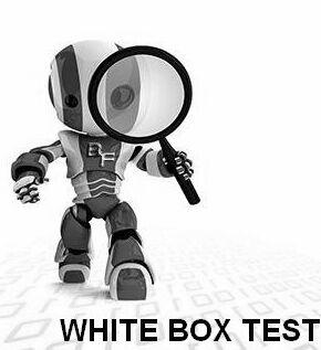 whitebox-testing