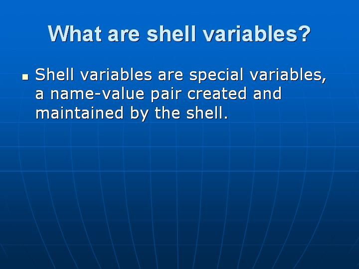 19_What are shell variables